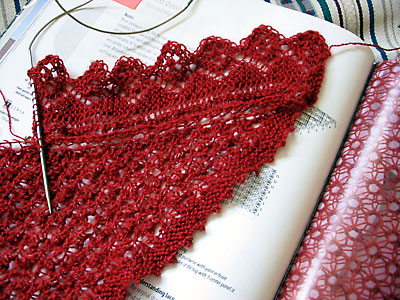 Starting the edging for the Curved Shawl