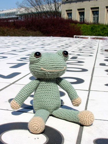 Finished Frog on a Holiday