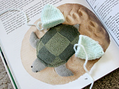 Stuffed turtle, with its back feet finished